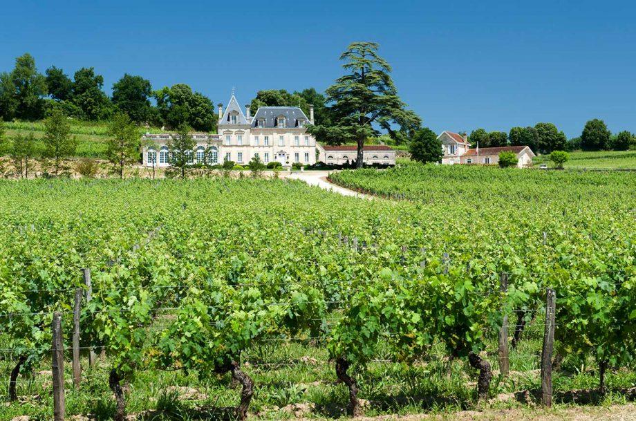 Château Fonplégade wines