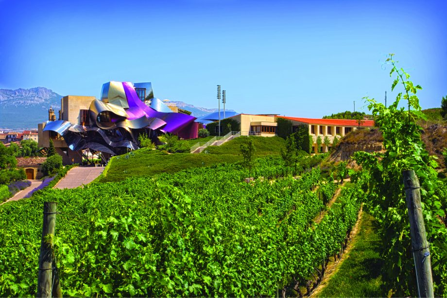 Rioja wine families