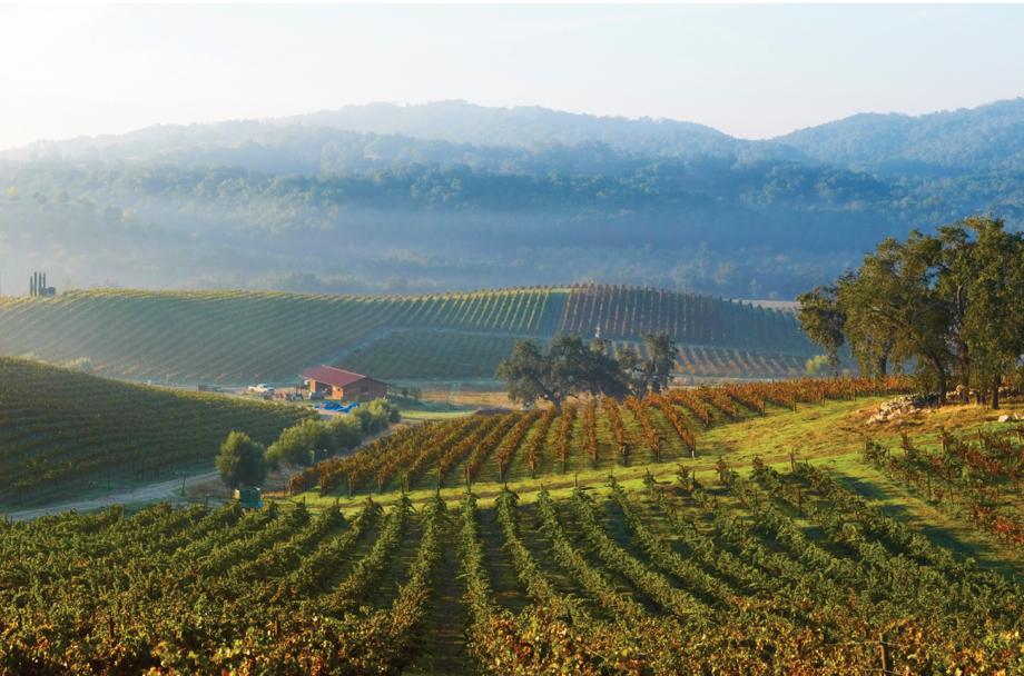 value Rhône California wines