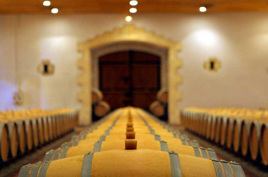 Bordeaux 2019 vintage