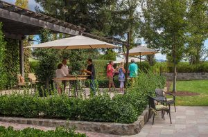 Caymus tasting rooms