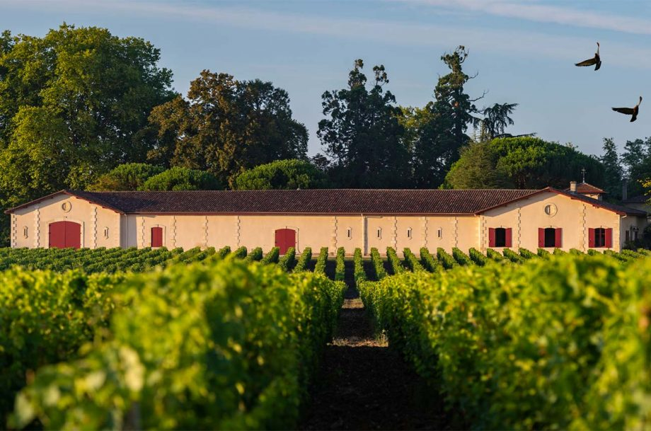 value en primeur red wines 2019