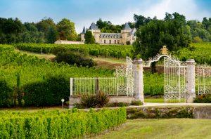 Best Fronsac 2019 wines, Chateau de la Dauphine, Fronsac