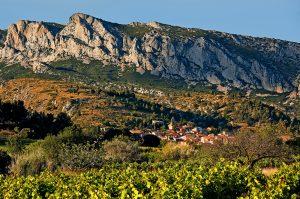 Roussilon wines