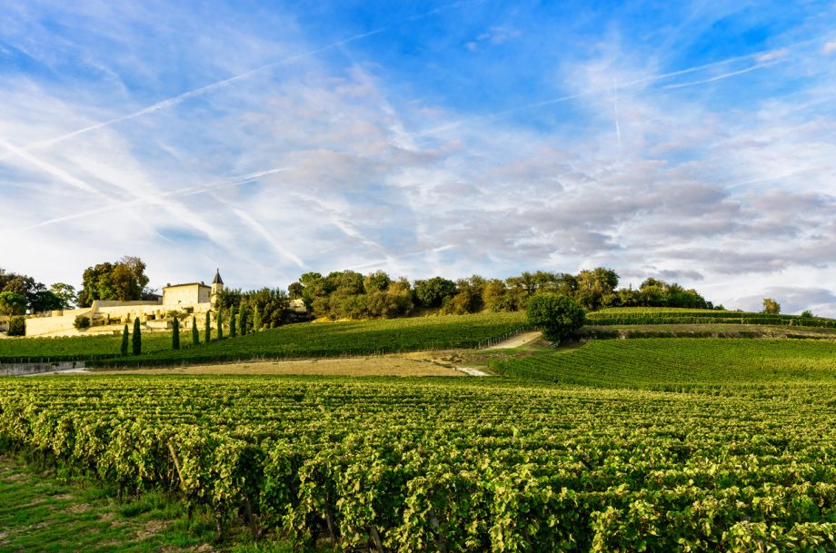 Best Bordeaux 2019 wines