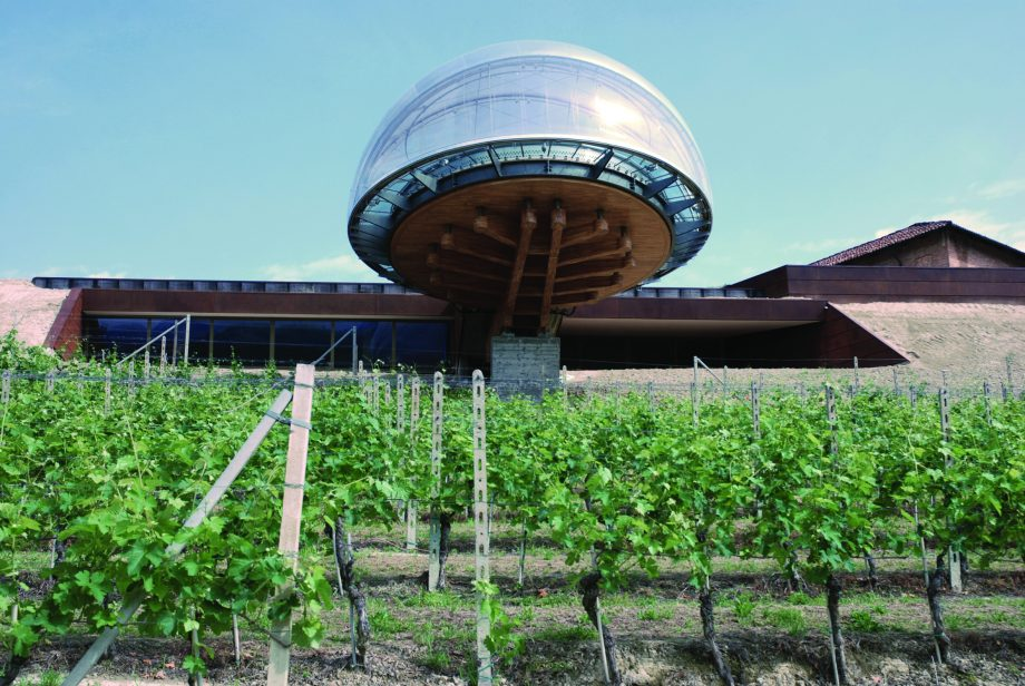 Ceretto 2016 Grape building