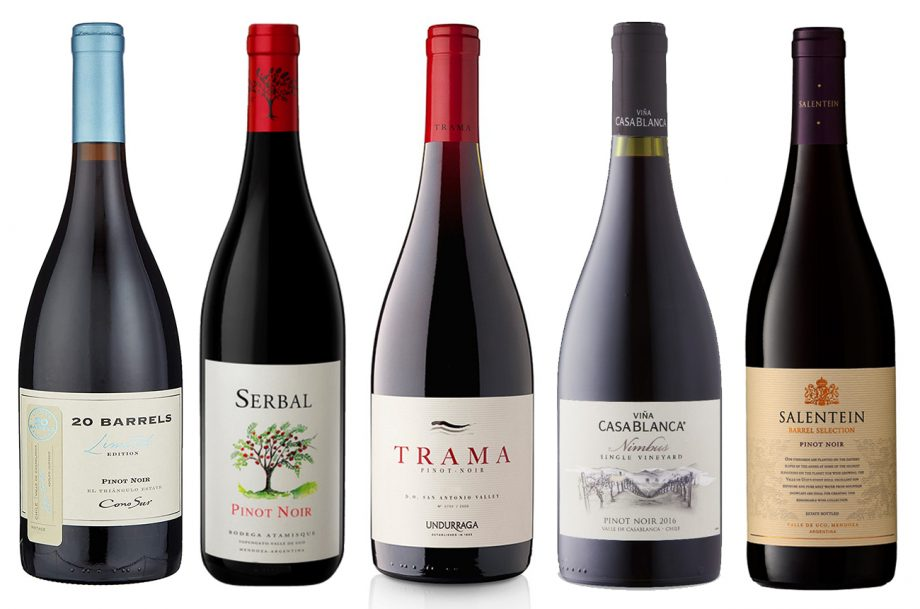 DWWA 2019 Argentina & Chile Pinot Noir