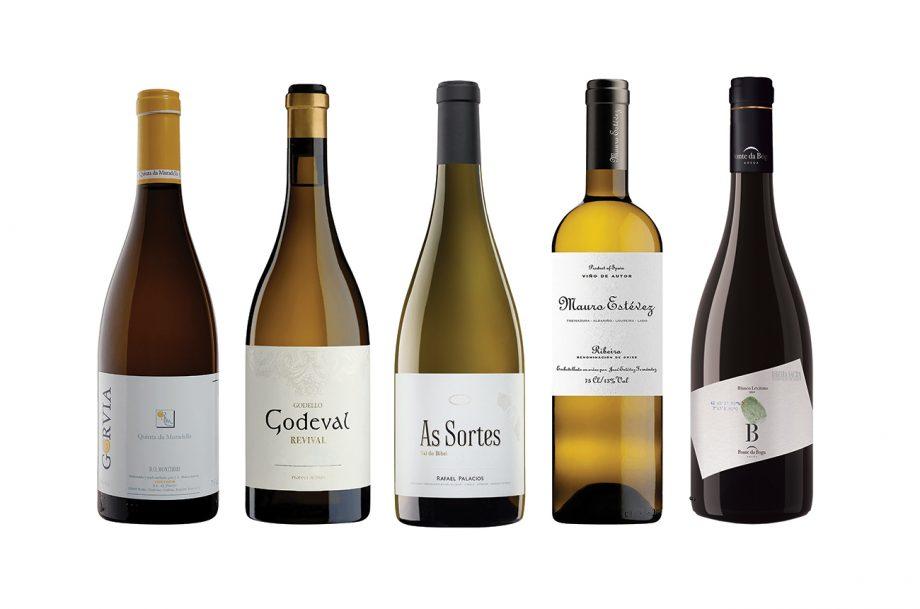 Galicia wines