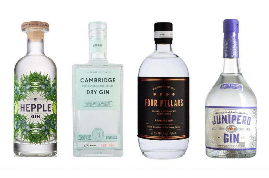 Best Gins for Martini