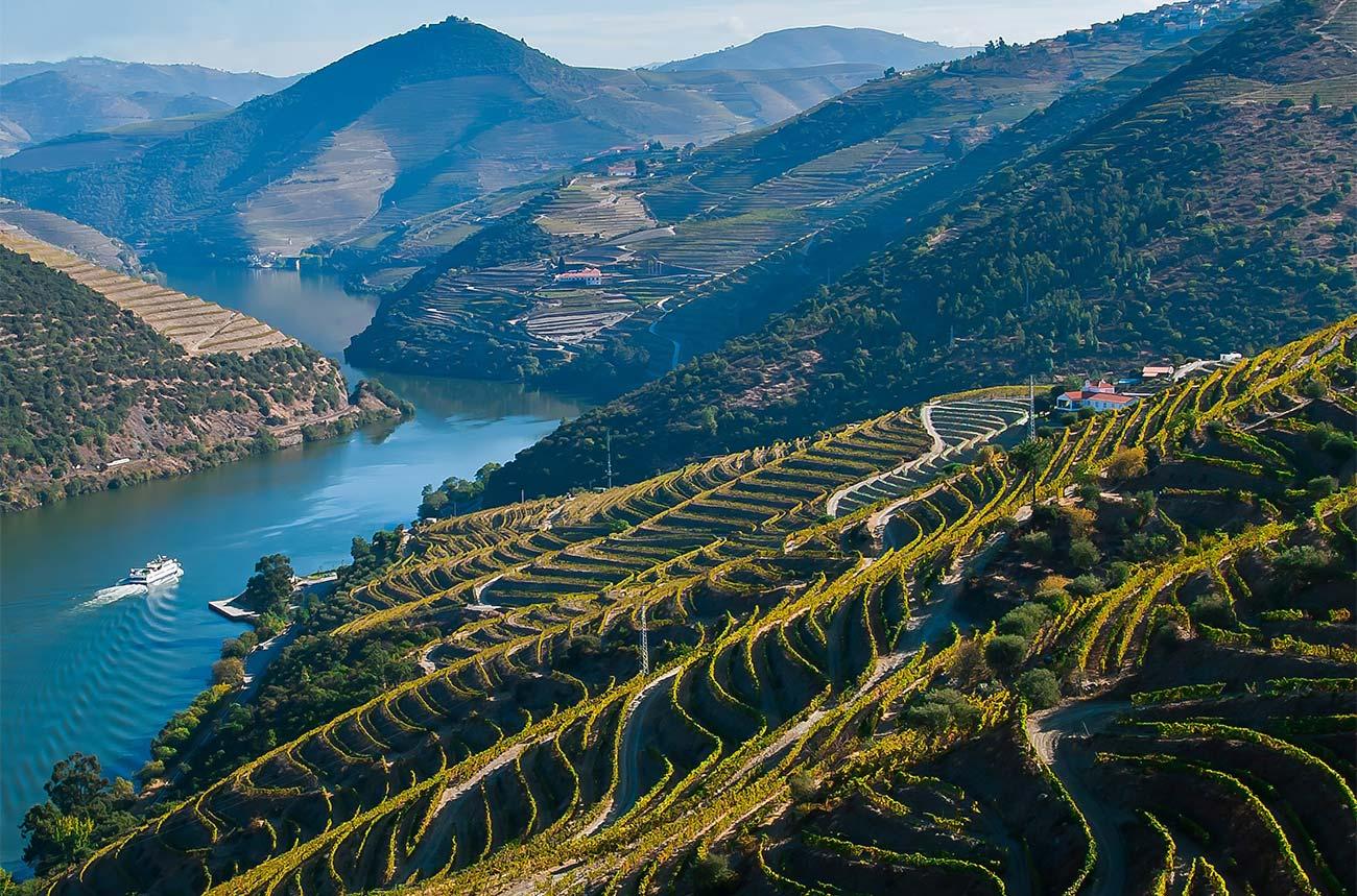 Soul Wines - Douro, Portugal - Decanter