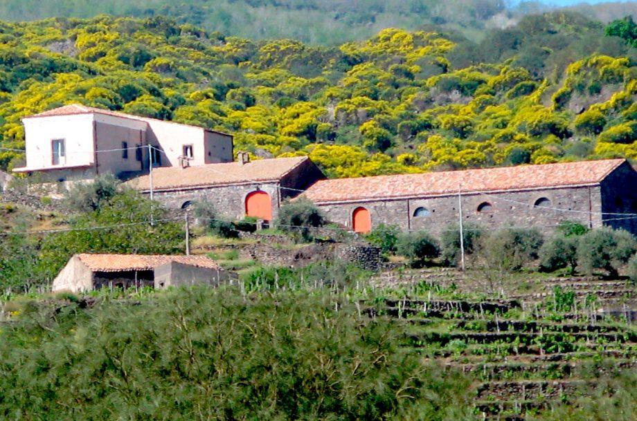 The Passopisciaro Winery