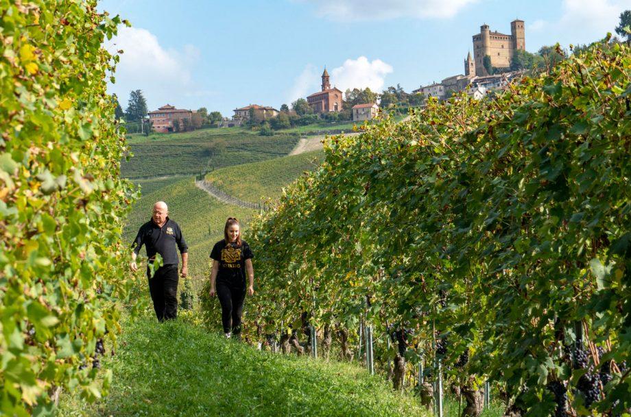 Sordo's Vigna Gabutti Vineyard