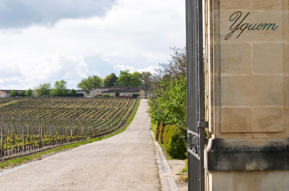 Chateau d'Yqueum, Place de Bordeaux wines