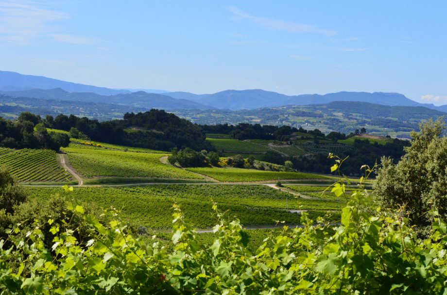 New Côtes du Rhône Villages appellation granted - Nyons - Decanter