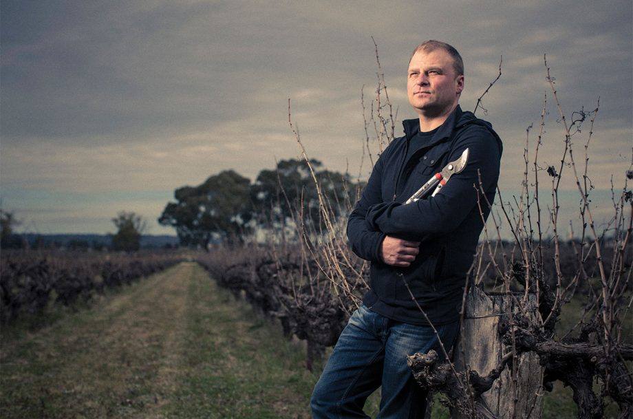 Dan Standish, Standish Wine Co