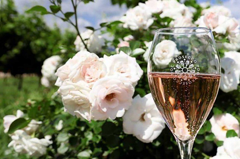 Prosecco rosé UK