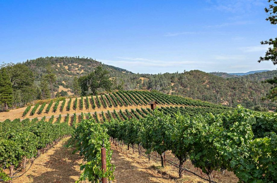 california wine ranch, property sale
