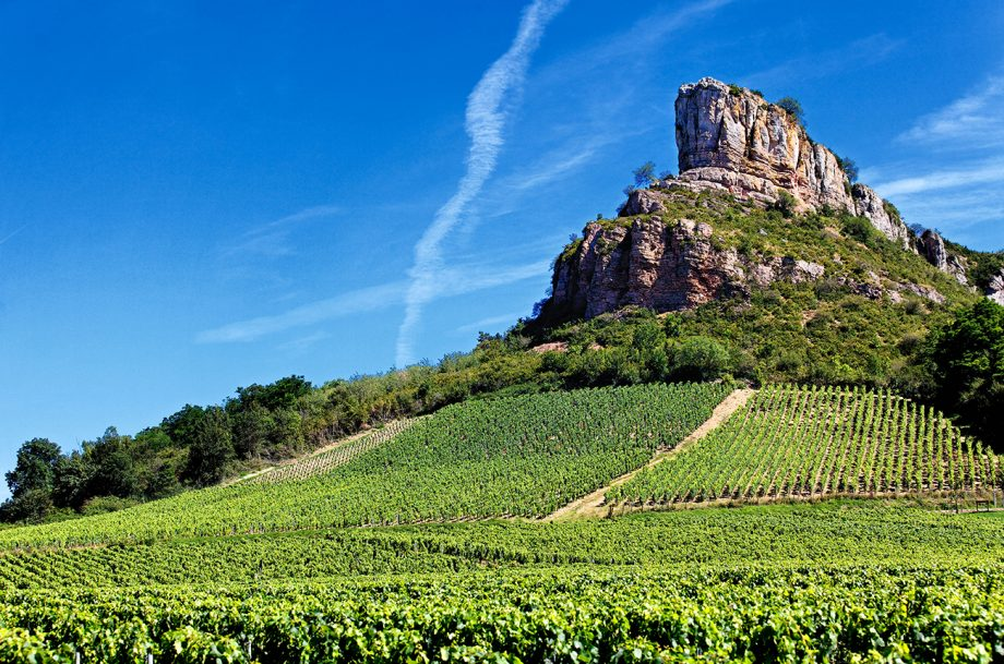 Solutre Rock with vineyards