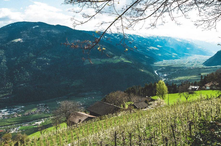 DWWA 2020 Northern Italy