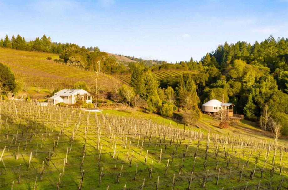 California pinot noir property listed for sale