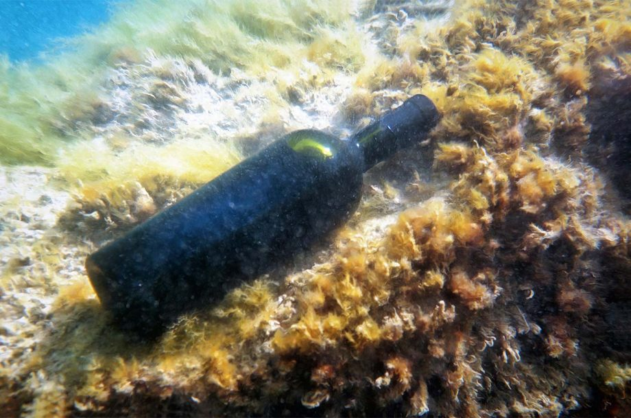 A bottle of wine underwater