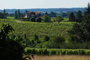Bergerac wine property for sale