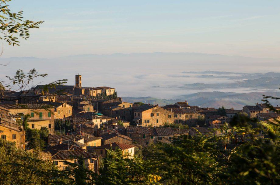 Brunello di Montalcino 2004 retrospective