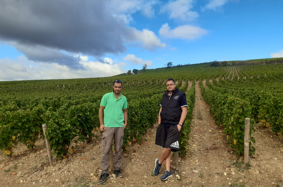 Julien and Arnaud Moreux, Pouilly-Fumé