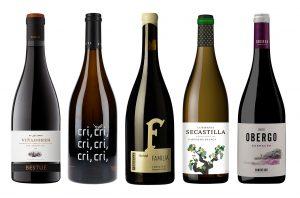 Somontano regional profile wines