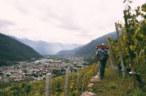 Valtellina Wine Top Producers