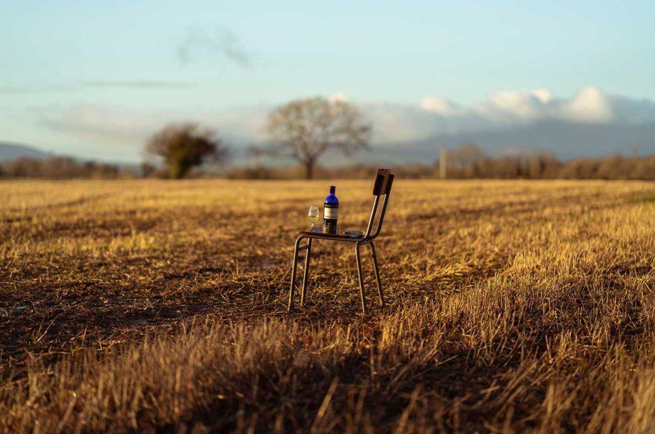 Whisky terroir study casts new light on debate