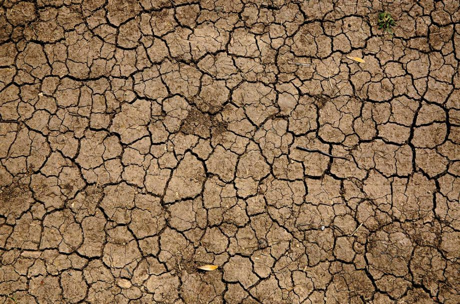 Europe has seen more severe summer droughts, says research