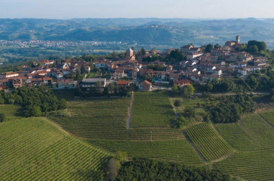 Burlotto_Vineyards