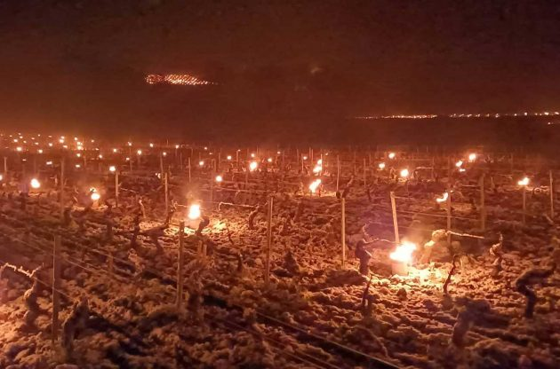 Preventing frost at Domaine Belleville in Burgundy