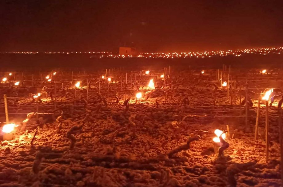 Candles are lit to prevent frost damage in French vineyards in April 2021