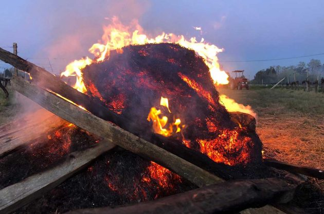 Fires lit in Bordeaux to help fight frost in April 2021