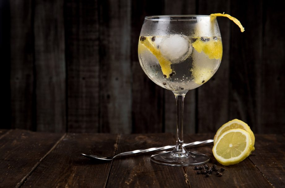 Large glass of gin and tonic with lemon slices