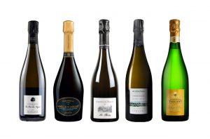 Pinot-Meunier-Champagnes