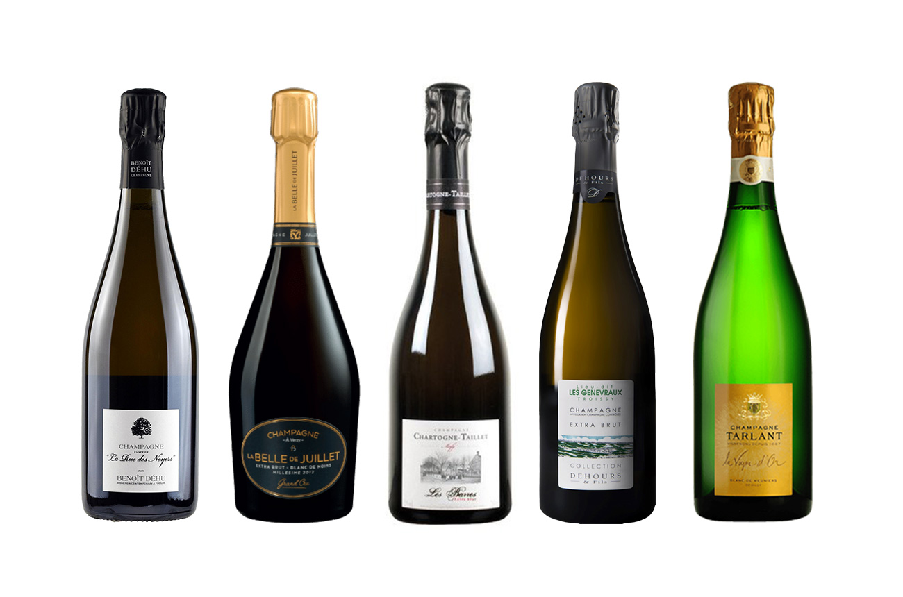 Guide to Pinot Meunier Champagne - Decanter