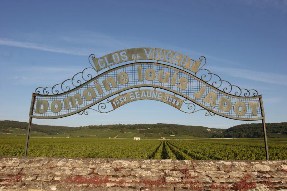 Louis Jadot wines