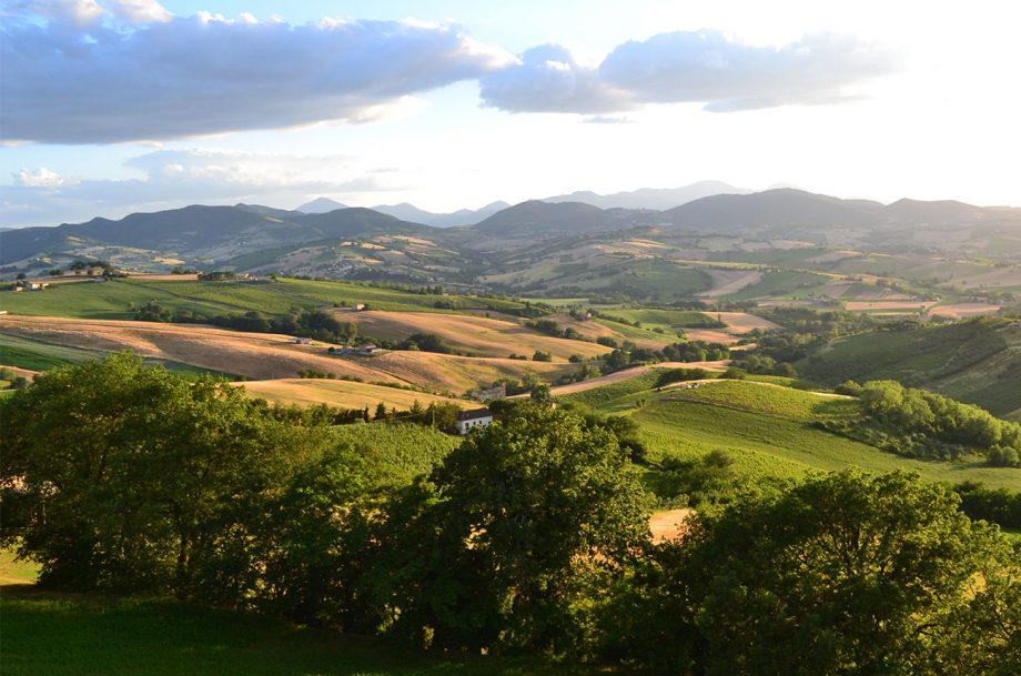 Sartarelli landscape