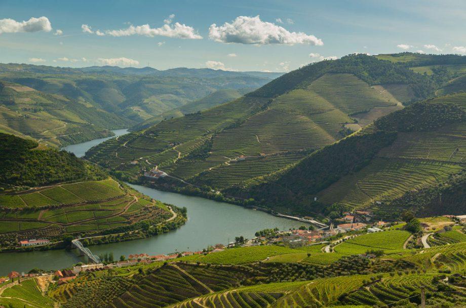 Soul Wines vineyards