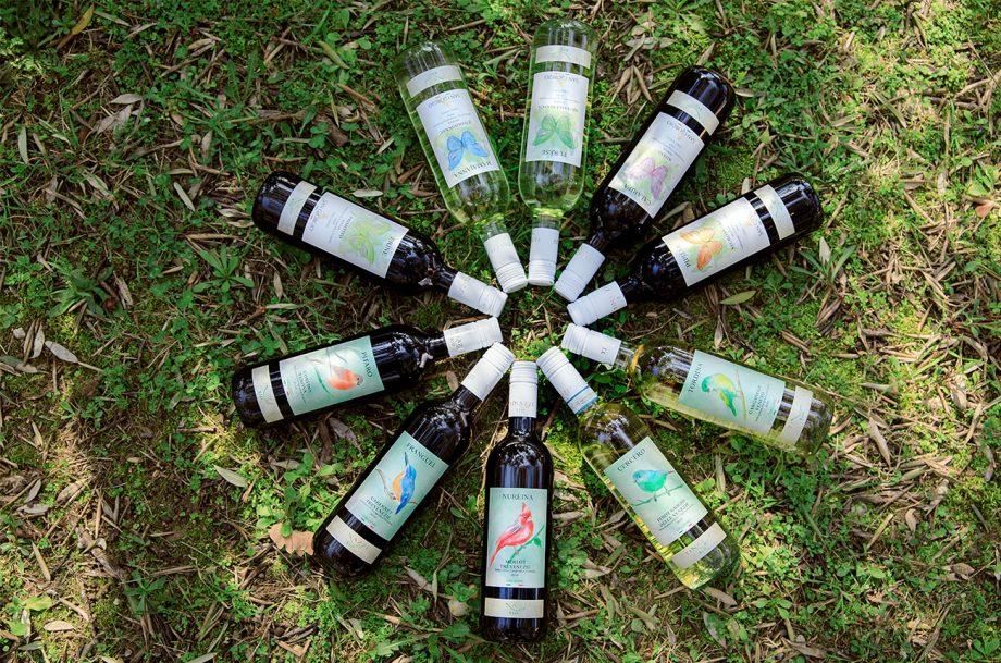 Tinazzi wine bottles