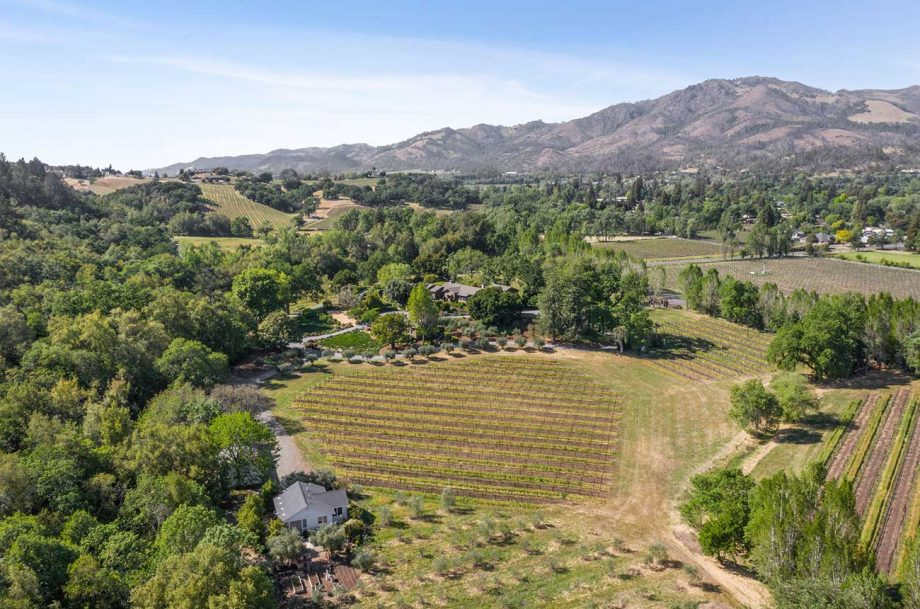 Two Creeks Farm vineyard property in Sonoma Valley