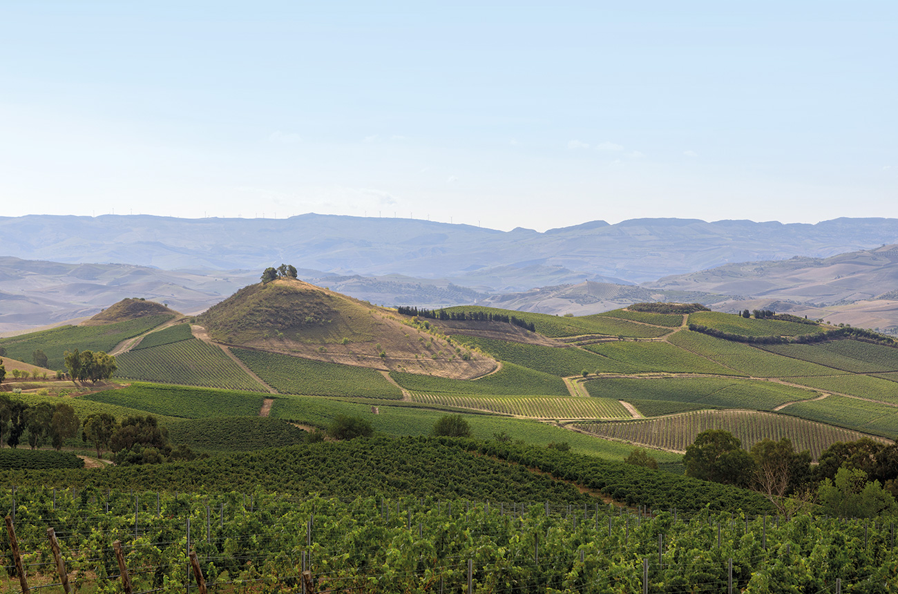 Sicily's wine evolution plus 10 top wines worth seeking out - Decanter