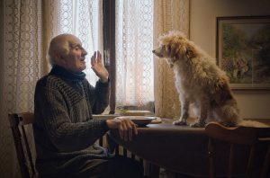 An old man sits at a table with his dog in a still from the film The Truffle Hunters