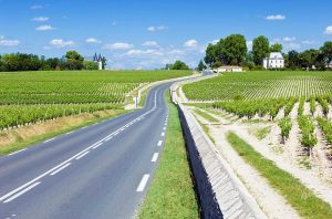 The route up through Pauillac, which saw some of the biggest rises in Bordeaux vineyard prices in 2020.