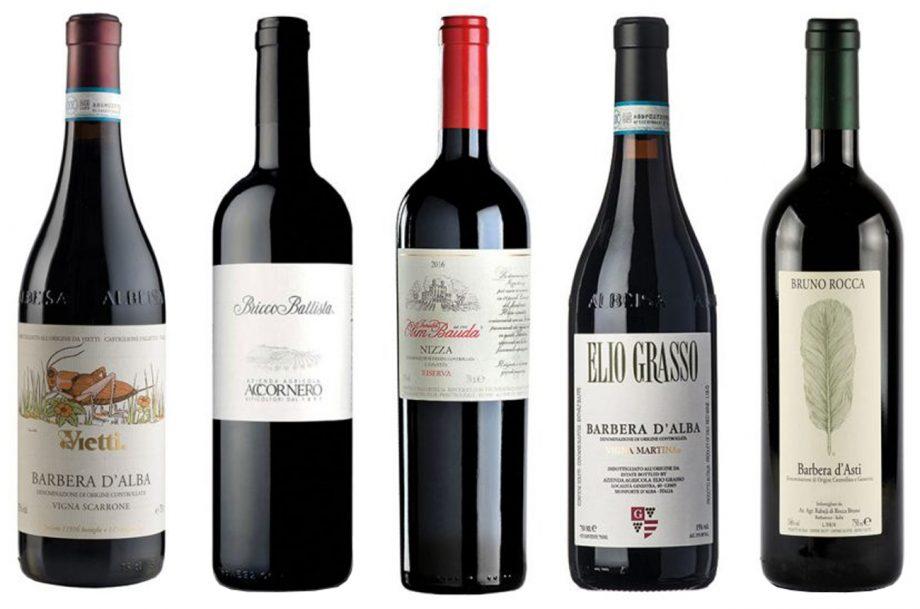 Barbera wines