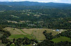 El Dorado County - Skinner Vineyards