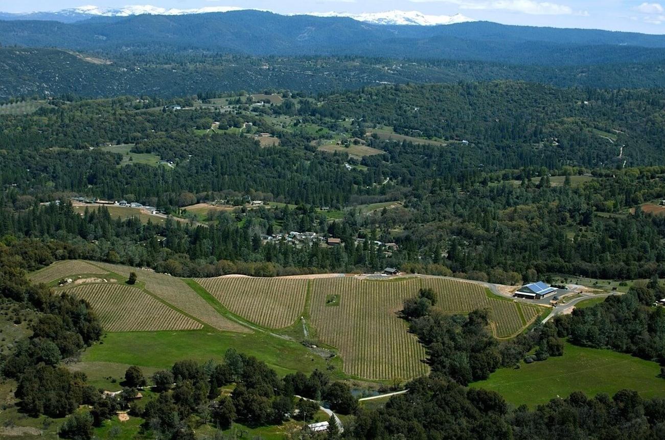 El Dorado County, California, for wine lovers - Decanter